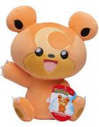 Pokémon Pluches en Accessoires